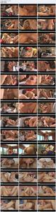 Войны Мамочек: Julia Ann против Lisa Ann / MILF Wars: Julia Ann vs Lisa Ann (2011) DVDRip